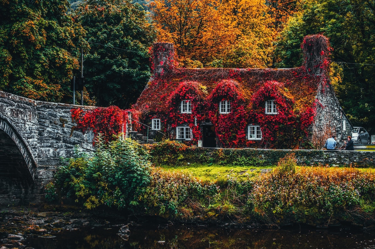 But if you want to be mesmerised with the lively trees that bloom with fiery-red and orange leaves, and experience an average temperature of 10°C, then the months of September to November are the most ideal time to book your UK tour.